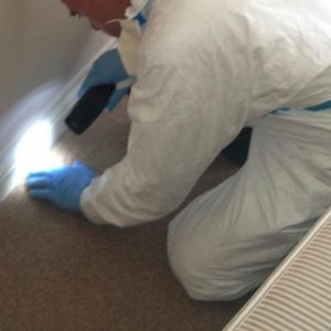 Resort-Hotel-and-Hospitality-Industry-Pest-Control-Services